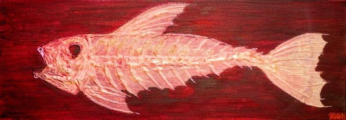 Fish-7